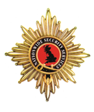 Nationwide Security Services Logo
